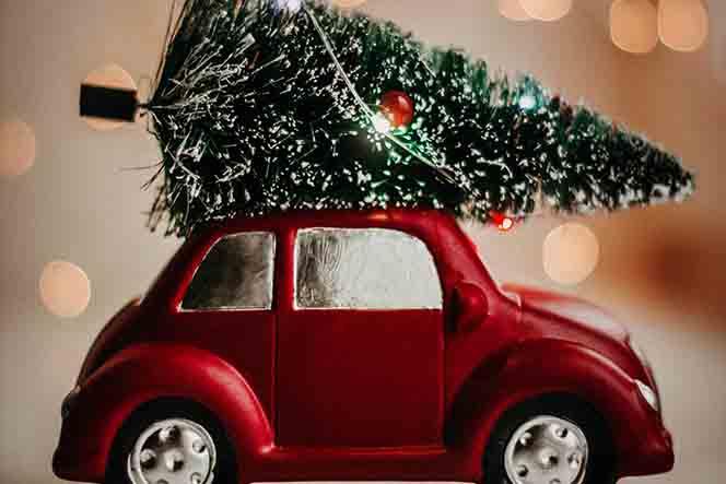Jeter son sapin de Noël