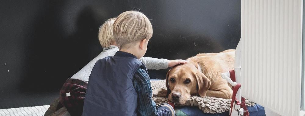 Des enfants avec un chien