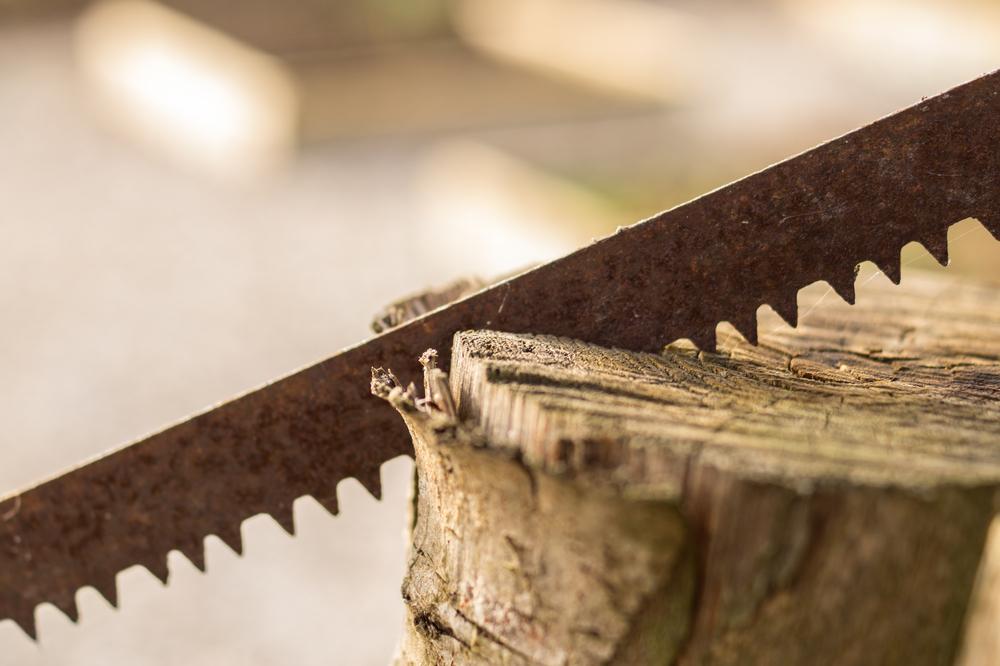Réaliser des sculptures en bois