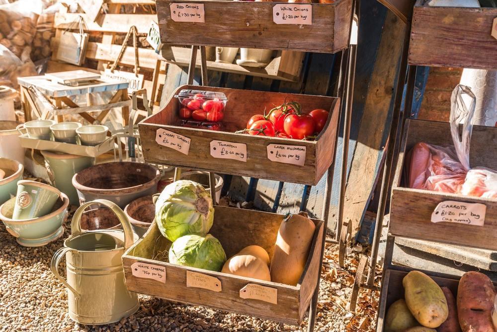 Des rangements à légumes fait avec des caisses de vin