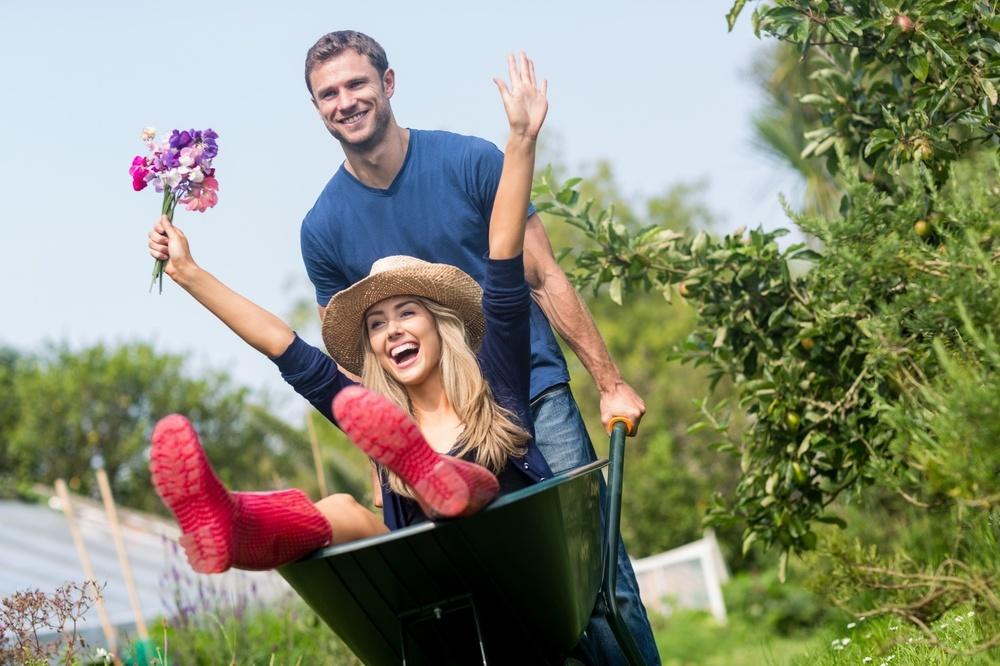 tondre le dimanche jardinier