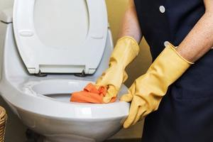 Comment bien nettoyer les WC ?